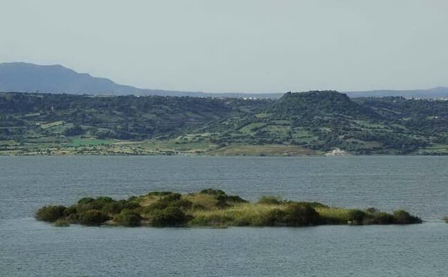 il lago omodeo (archivio l unione sarda)