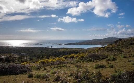 Una panoramica dell'Asinara (archivio L'Unione Sasrda)
