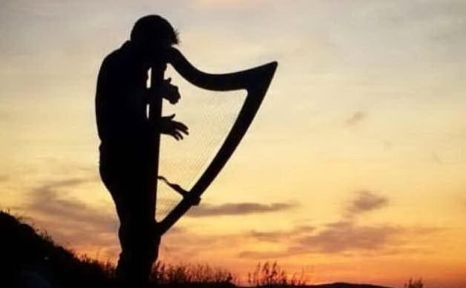 l arpista raoul moretti (foto dell artista)