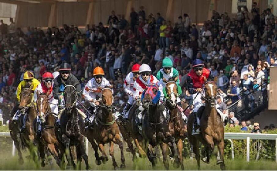 cavalli in gara a chillivani (foto concessa)