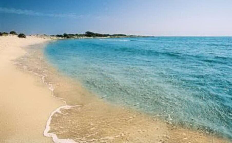 la spiaggia di cala ginepro (archivio l unione sarda)