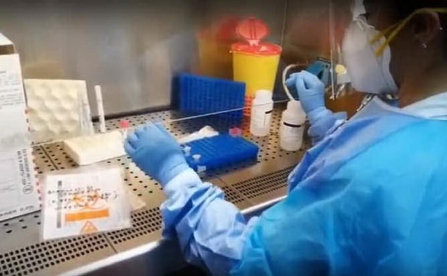 il laboratorio di virologia a sassari (archivio l unione sarda)