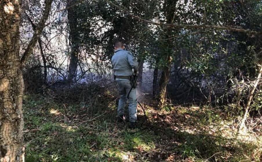 un agente impegnato nello spegnimento di un incendio (foto corpo forestale)