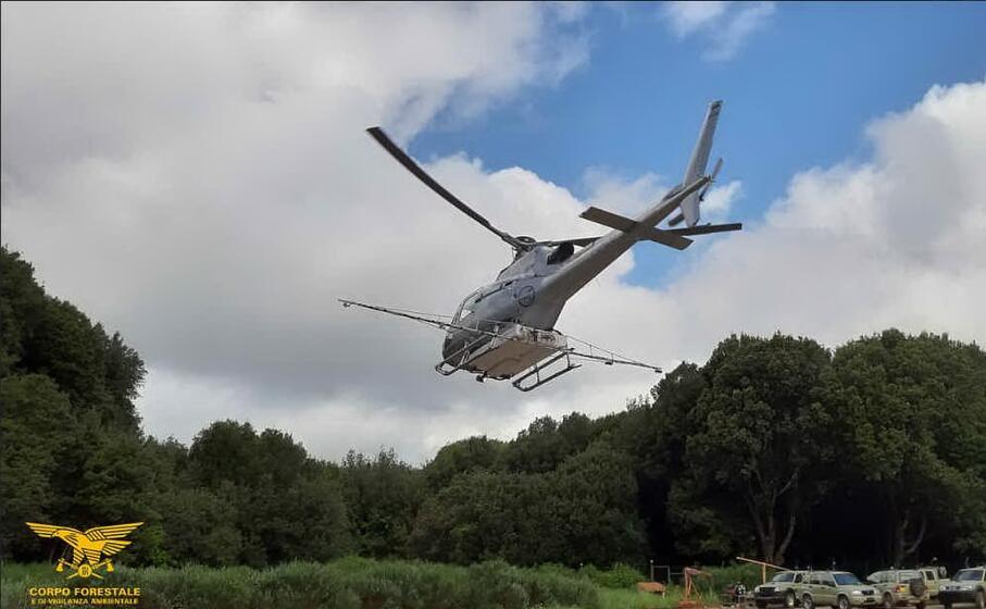 uno degli elicotteri del corpo forestale