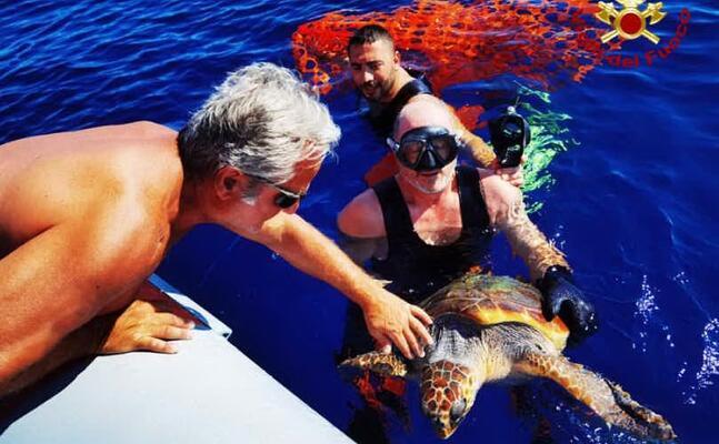 le operazioni di soccorso della tartaruga (foto vigili del fuoco)