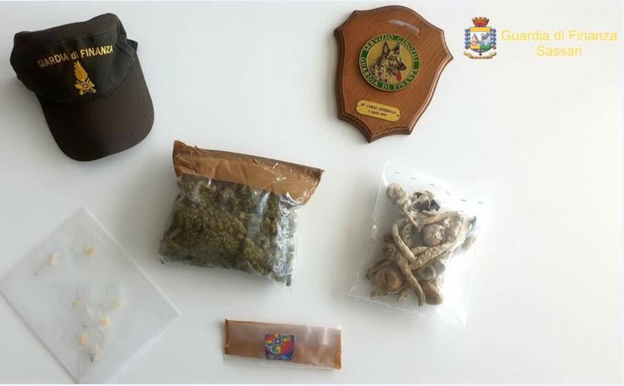 la droga posta sotto sequestro (foto guardia di finanza di sassari)