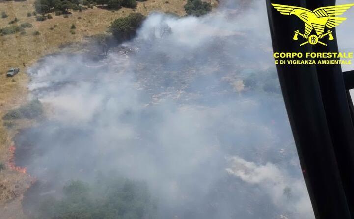 la zona vista dall elicottero (le foto sono del corpo forestale)