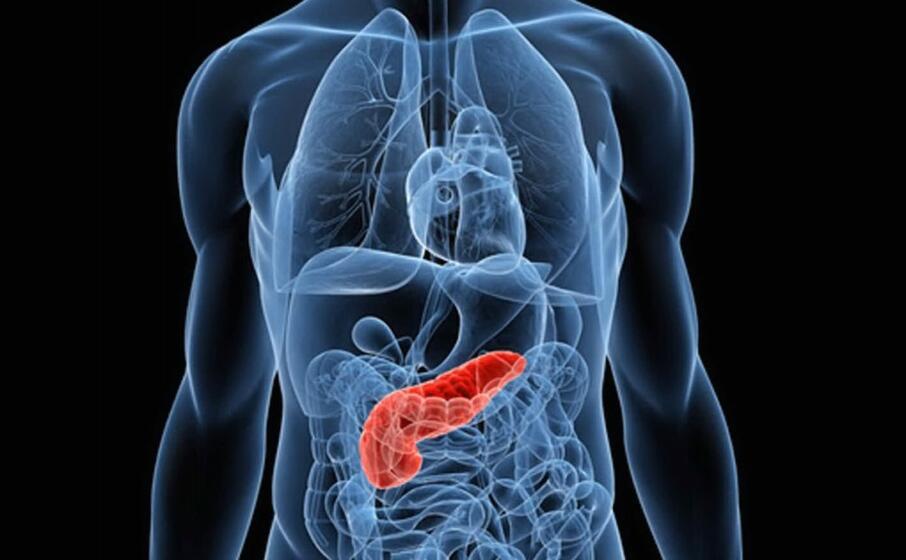 malattie del pancreas (foto simbolo archivio u s )
