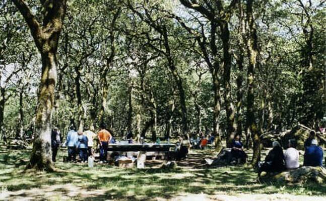 macomer il parco al monte di sant antonio (foto f oggianu)