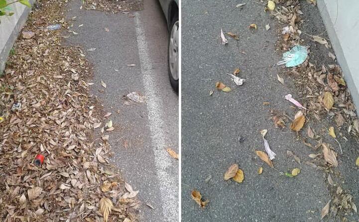 cagliari via belgrado da almeno 3 mesi siamo in mezzo a sporcizia varia nessun operatore pulisce la strada foto inviate da un lettore (19 06 2020)