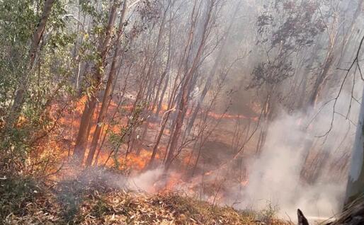 Il fuoco (Foto Protezione civile Santa Barbara)