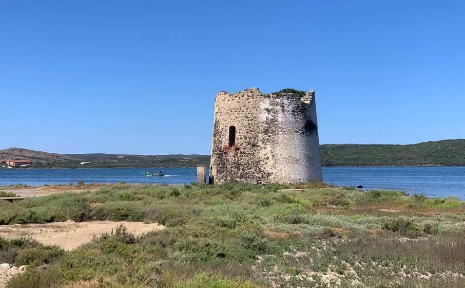 la torre (foto pinna)