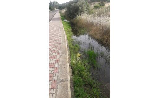 Il ristagno d'acqua a valle del potabilizzatore segnalato dalla minoranza (L'Unione Sarda)