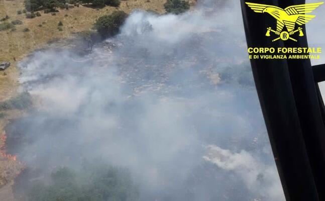 un incendio (foto corpo forestale)