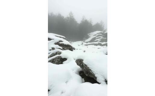 Neve a Limbara