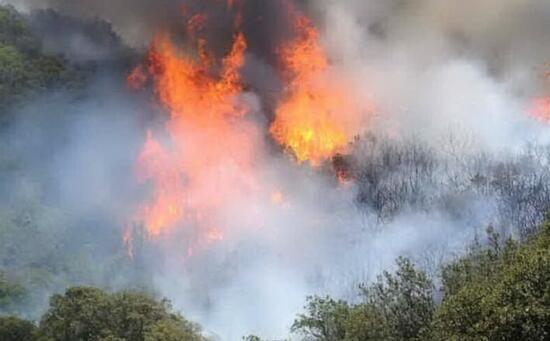 Incendio doloso a Sinnai: in fiamme la macchia mediterranea