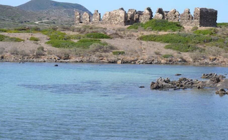 l isola dell asinara (foto pala)