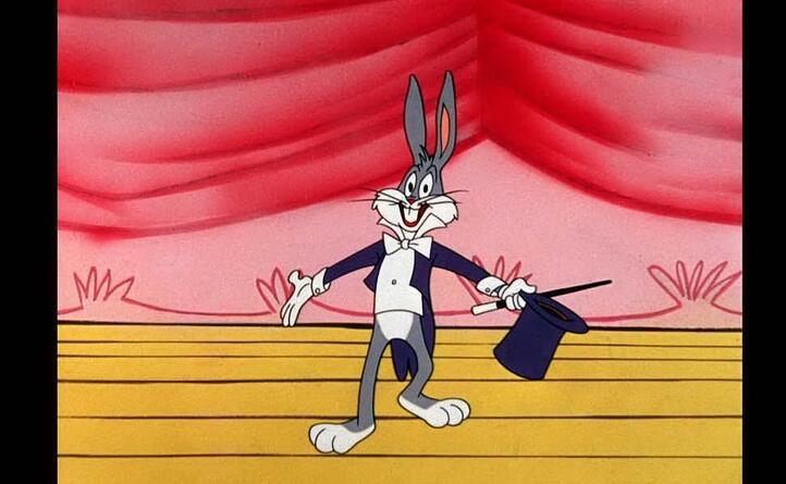 il coniglietto dalle lunghe orecchie (ansa)