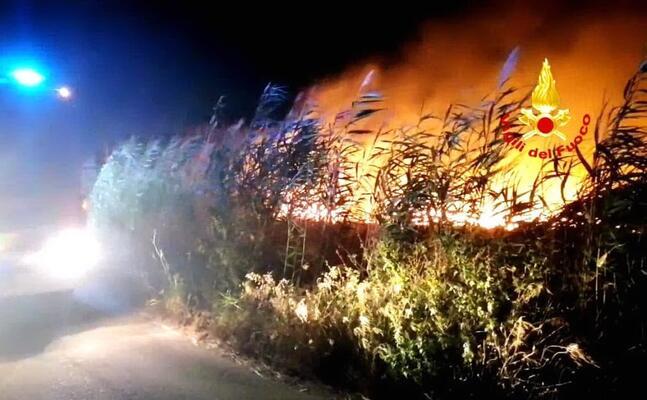 la vegetazione in fiamme (foto vigili del fuoco)