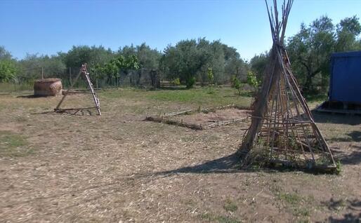 Il giardino (L'Unione Sarda - Deidda)