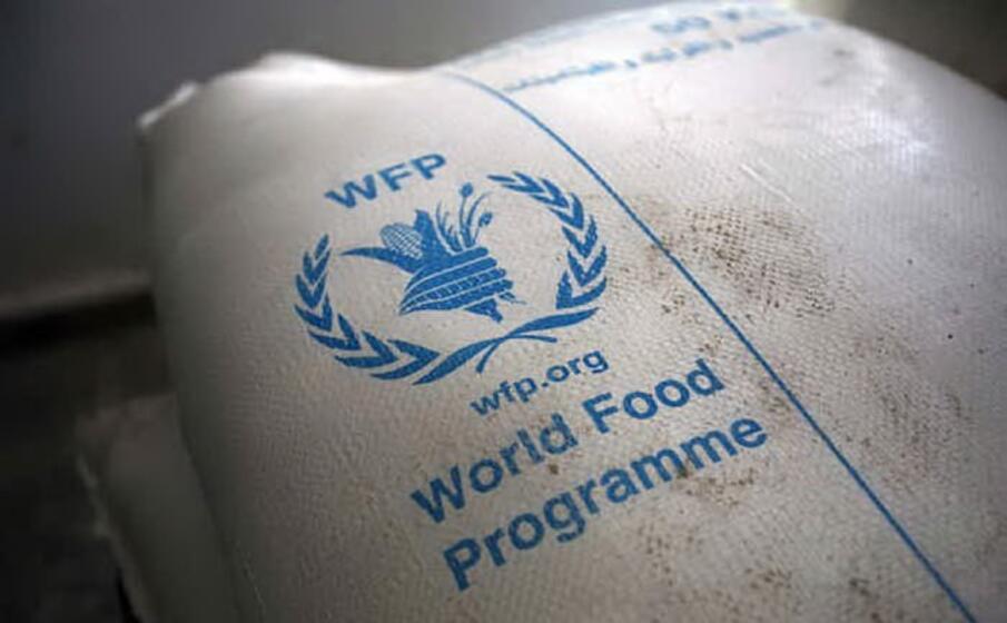 in autunno viene assegnato il nobel per la pace lo vince il world food program ovvero la fao l agenzia onu per l alimentazione in prima linea contro fame carestie e povert