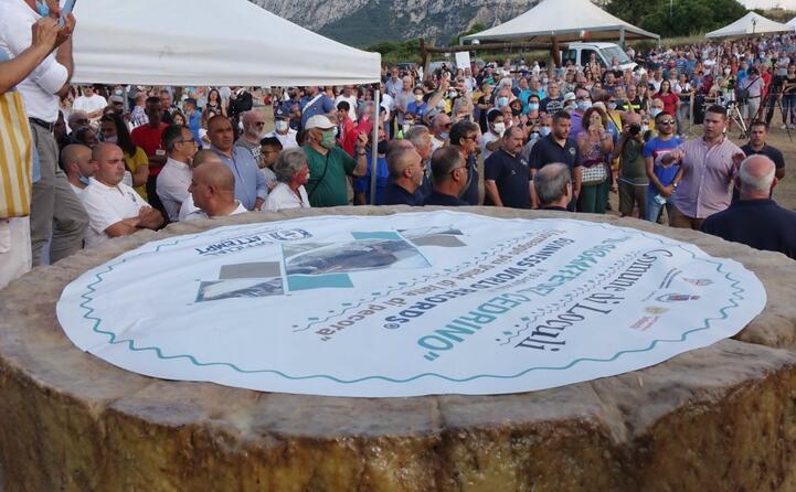 e sardo il pecorino pi grande del mondo record per il gigante del cedrino di loculi