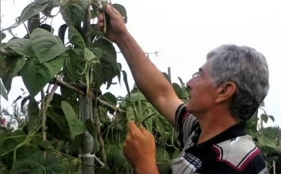 uno dei proprietari dei terreni di pesaria (foto sanna)