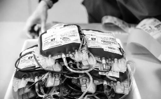 Le sacche di sangue (foto Serena Carta dal volume Gift)