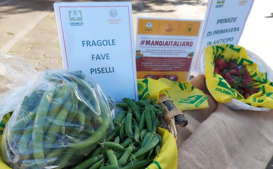 primizie al mercato coldiretti (foto coldiretti)