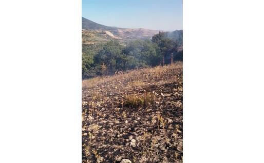 L'area percorsa dall'incendio (foto L'Unione Sarda - Pintori)