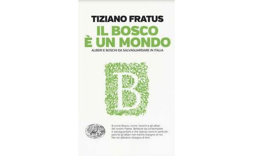 La copertina del libro di Fratus