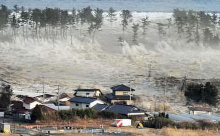 lo tsunami (foto ansa)