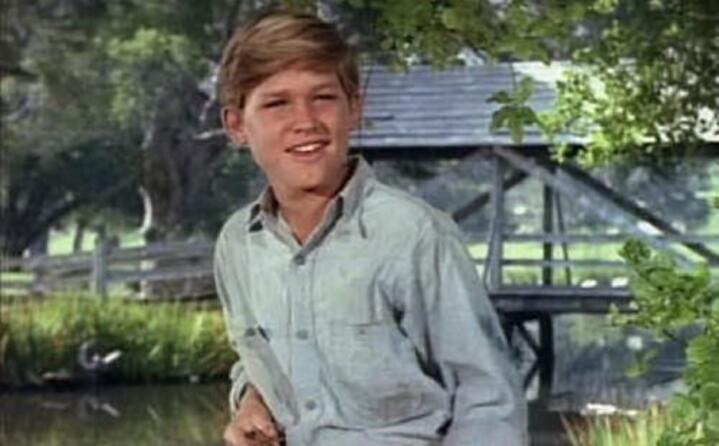 attore statunitense sin da piccolo protagonista di alcuni film della disney