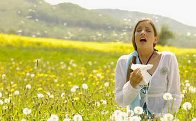allergie (foto simone loi)