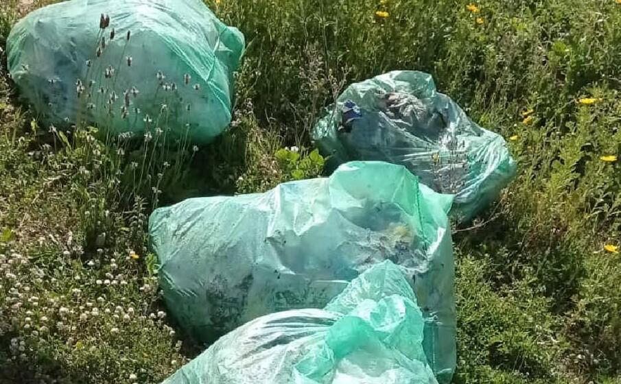 i sacchi di spazzatura (l unione sarda pala)