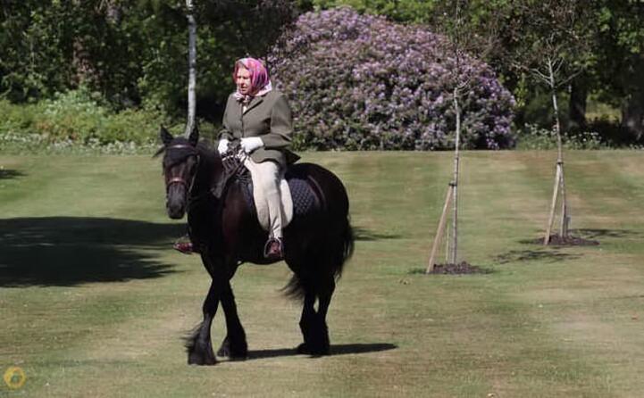 la regina a cavallo